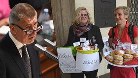 Babiš řečnil ve Sněmovně a žádal o důvěru pro svou vládu, před budovou se demonstrovalo.