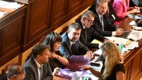 Zrušení karenční doby hájila ve Sněmovně mj. exministryně Kateřina Valachová (ČSSD)
