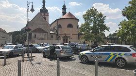 Policie honičku ukončila v Brandýsu nad Labem.