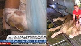 Ženu na Ukrajině napadl při focení lev. Zoologická zahrada jí odmítla poskytnout zdravotní péči.
