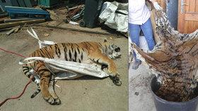 """Rodina Berousků se zlobí, že podezření padá na všechny: Jen Ludvík byl """"tygří kat"""""""
