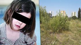 Hrůza v Ostravě: Muž znásilnil holčičku (8)! Je mu kolem 30, má tmavé vousy a vlasy
