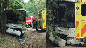 Autobus u Skorkova vyjel ze silnice a narazil do stromu