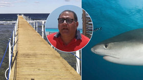 Starosta Marsá Alam popsal okolnosti útoku žraloka na českého turistu.