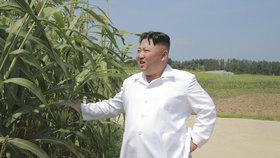Diktátor Kim vyrazil do továren na potraviny a dobytčích farem, aby rozptýlil obavy svého lidu. KLDR hrozí hladomor