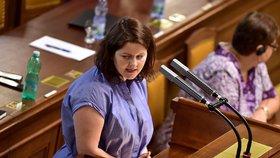 Ministryně práce a sociálních věcí odmítá podpořit senátní úpravu důchodů.