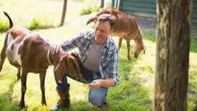 Kozy vnímají lidské emoce, ukázal výzkum. A přitahují je úsměvy.