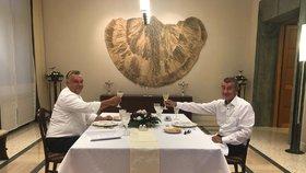 Po společné večeři přijal Orbán pozvání Andreje Babiše do České republiky
