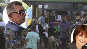 Europoslankyně Michaela Šojdrová (KDU-ČSL) chce přesvědčit premiéra Andreje Babiše, aby ČR v rámci solidarity přijala 50 syrských sirotků. Premiér to odmítá. Chce dětem pomáhat v zemi, kde se narodily a žijí.