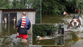Majitelé se evakuovali a svých šest psů nechali v zamčené kleci.