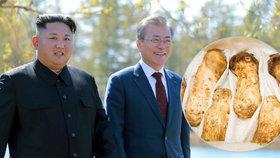 Jihokorejský prezident Mun Če-in dostal od severokorejského vůdce Kim Čong-una vzácný dar, několik tun čirůvek větších.