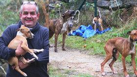 Tyran přivázal psa, fenku i tři štěňata k plotu: Byla vystrašená a podvyživená, až jim lezla žebra