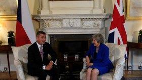 Premiér Andrej Babiš se sešel 24. října 2018 v Londýně s britskou premiérkou Theresou Mayovou.
