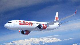 Letadlo Boeing 737 v barvách společnosti Lion Air se zřítilo do moře krátce po startu. Na palubě bylo 188 lidí.