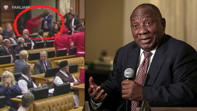 Poslanci v jihoafrickém parlamentu si problém vyříkali ručně (6.11.2018).