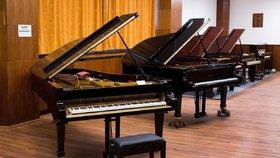 Historie klavírů Petrof se začala psát v polovině 19. století, když vyučený truhlář Antonín Petrof odešel do Vídně naučit se vyrábět klavíry