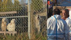 Blesk pomohl rozkrýt množírnu psů. Desítky zanedbaných zvířat měly putovat do Česka