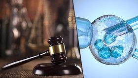 Ústavní soud rozhodne v případě umělého oplodnění.