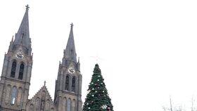 Na náměstí Míru už mají Vánoce. Začaly tu tradiční vánoční trhy.