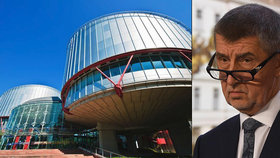 Andrej Babiš u soudu ve Štrasburku neuspěl.
