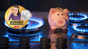 Ceny plynu na burzách stoupají.