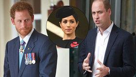 Princ Harry se na přání Meghan nezúčastní vánočního honu! Princ William zuří