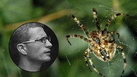 Pavouci by mohli sežrat do roka celé lidstvo, tvrdí studie. Na metru jich žijí stovky