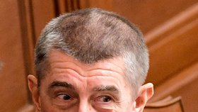 Typické gesto premiéra Andreje Babiše - tentokrát ho použil při projednávání závěrečné fáze státního rozpočtu na rok 2019 (19. 12. 2018)
