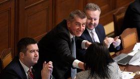 Projednávání státního rozpočtu na rok 2019: Zleva Jan Hamáček (ČSSD), Andrej Babiš (ANO) a Richard Brabec (ANO). Alena Schillerová (za ANO) je zády k objektivu