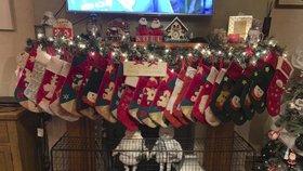 Vánoce u britské rodiny Radfordových.