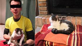 Kočku Kessi, která byla 8 dní na stromě, se podařilo zachránit! Statečný arborista ji sundal ze 17metrové výšky.
