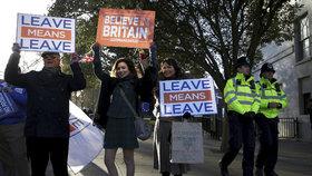 Demonstrace na podporu brexitu (prosinec 2018)