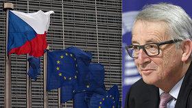 Češi z Bruselu získali na dotacích už 145 miliard. Agrofertu to dál drhne