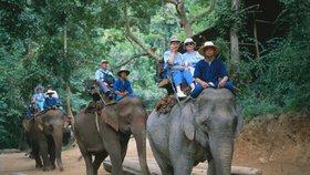 Thajsko je oblíbenou dovolenkovou destinací, i Čechů.