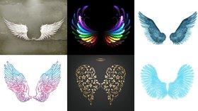 Která křídla jsou vašemu srdci nejblíž?