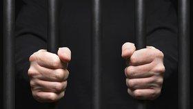 Ministryně spravedlnosti Marie Benešová (za ANO) a nejvyšší státní zástupce Pavel Zeman chtějí řešit přeplněnost věznic v Česku. Pomoci by mohlo například větší využívání peněžitých trestů nebo elektronických náramků.