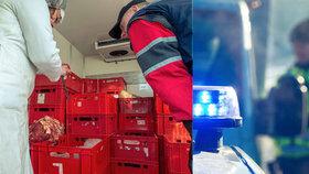 Veterináři, policisté a celníci zastavili v tomto týdnu kvůli polskému hovězímu 543 vozidel v příhraničních oblastech. Z toho ve 139 případech vezl kamion či dodávka veterinární zboží, inspektoři přišli na 16 závad, většinou administrativních.