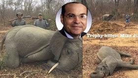 Podnikatel zastřelil dvě sloní mláďata. Prý v sebeobraně.