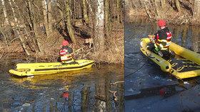 Pod Artušem se propadl led a voda ho odřízla na ostrůvku: Zachránili ho hasiči