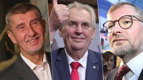 Jaké volby čekají Česko v příštích letech? Babiš chce obhájit úspěchy ve volbách do EP a Sněmovny, ODS bude navazovat na senátní úspěch a země si vybere čtvrtého prezidenta