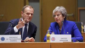 Předseda Evropské rady Donald Tusk s britskou premiérkou Theresou Mayovou