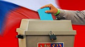 Na vyřízení voličského průkazu pro prezidentské volby dochází čas.