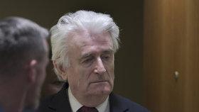 Vůdce bosenských Srbů Radovan Karadžič u soudu OSN v Haagu. Za genocidu dostal doživotí za mřížemi (20. 3. 2019).