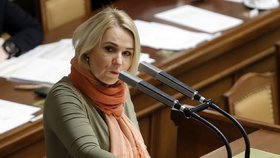 Šéfka sněmovního výboru pro obranu Jana Černochová se zastala ředitele BIS Koudelky.
