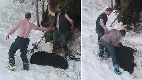 Andrew si s Owenem nad mrtvou medvědicí plácl, pak ji společně stáhli z kůže