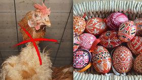 Vejce nejen na Velikonoce se Čechům prodraží. Obchody totiž upouštějí od prodeje těch z klecových chovů