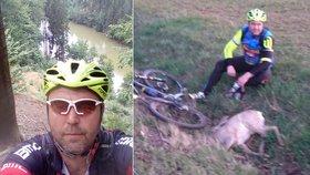 Cyklista se srazil se srncem. Zvíře náraz nepřežilo.