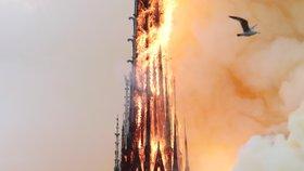 Věž pařížské katedrály Notre-Dame se kvůli mohutnému požáru zřítila.