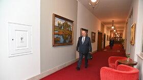 Ministr zemědělství Miroslav Toman (ČSSD) přichází na jednání vlády