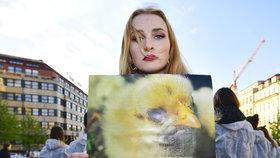 Na Václavském náměstí demonstrovali lidé v souvislosti s Velikonocemi. Tichým protestem upozorňovali na kruté zacházení s drůbeží při produkci vajec.